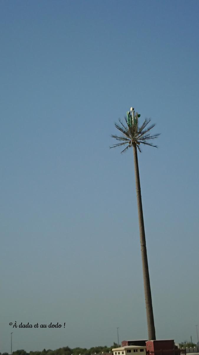Palmier antenne relais à Dubaï