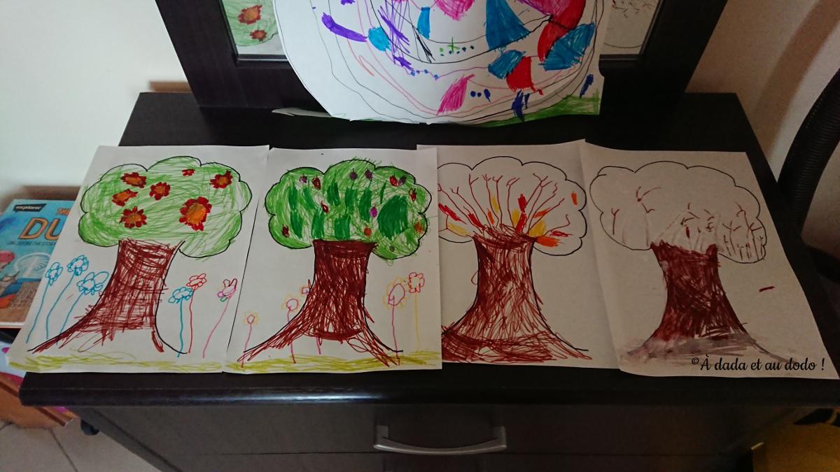 un arbre et 4 saisons différentes