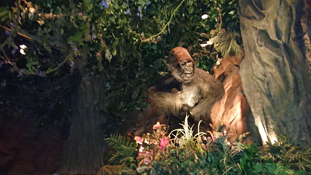 Gorille dans la jungle
