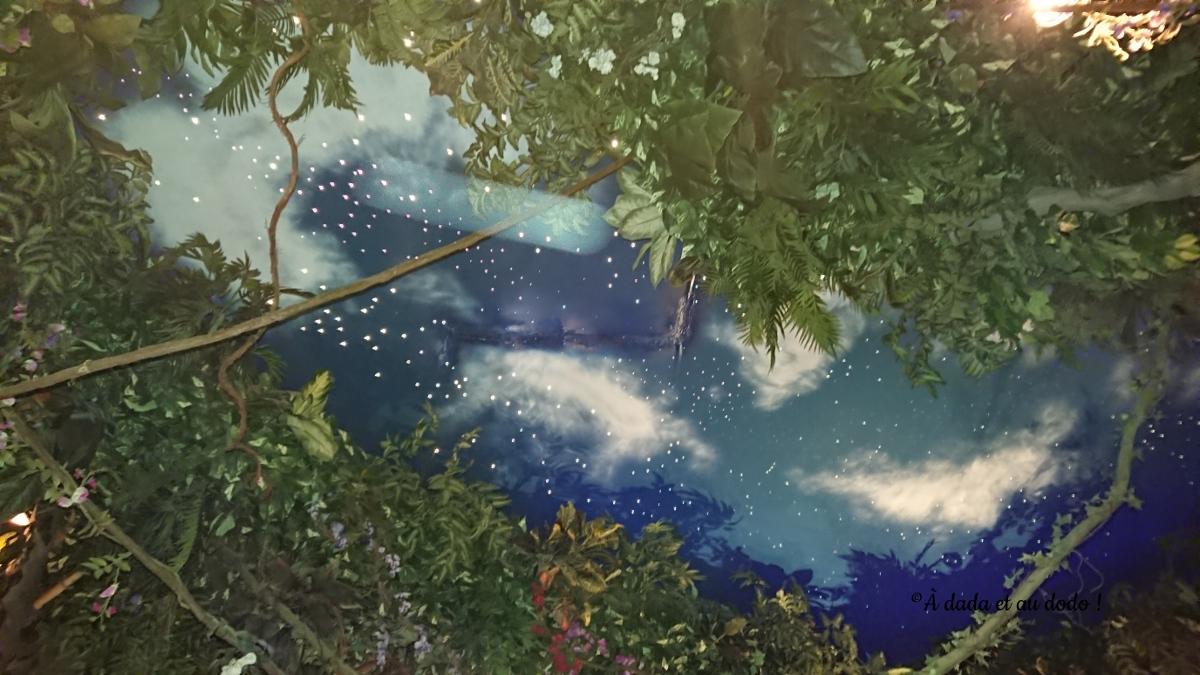 Ciel étoilé au Rainforest café dubaï