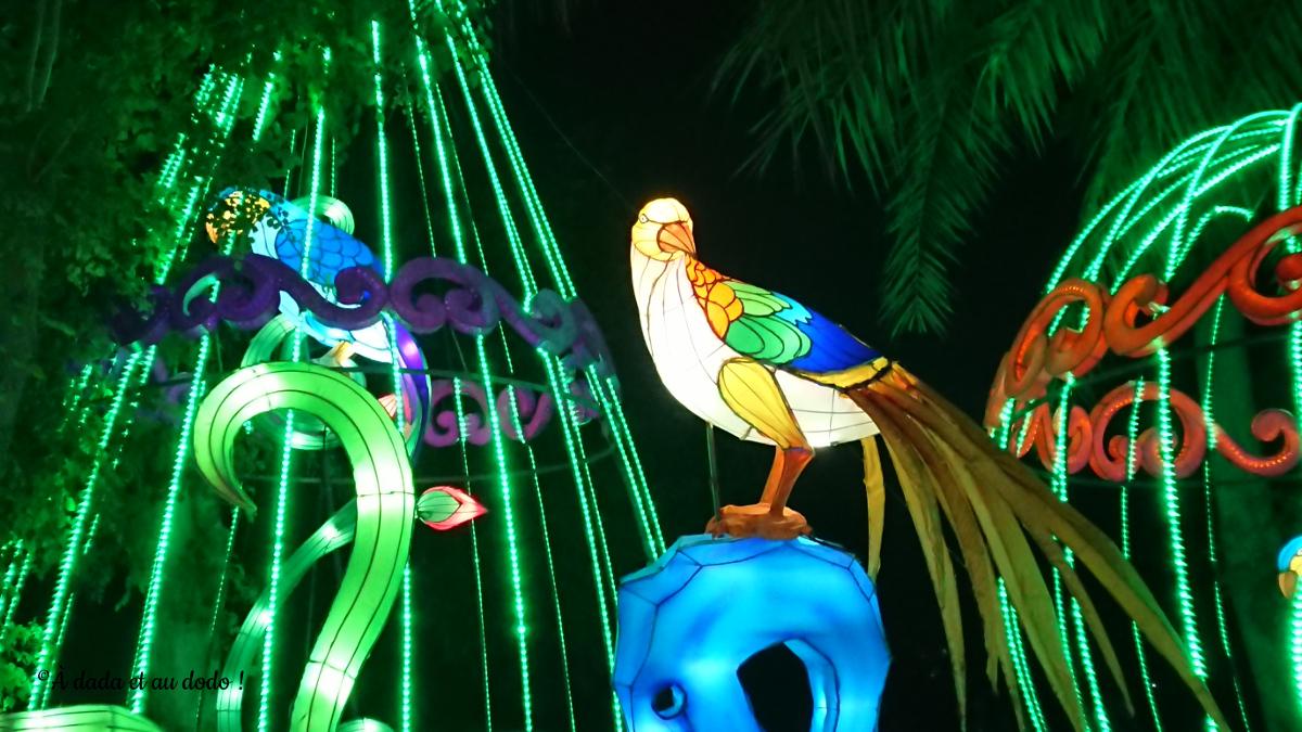 Dubai Garden Glow : les oiseaux