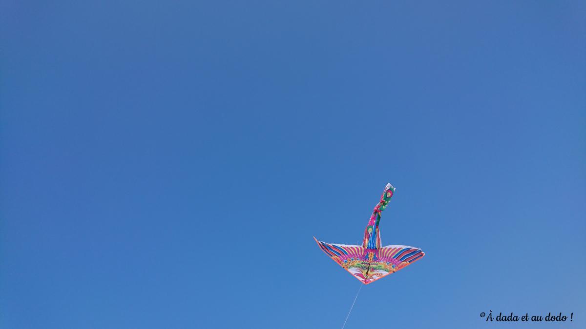 cerf-volant