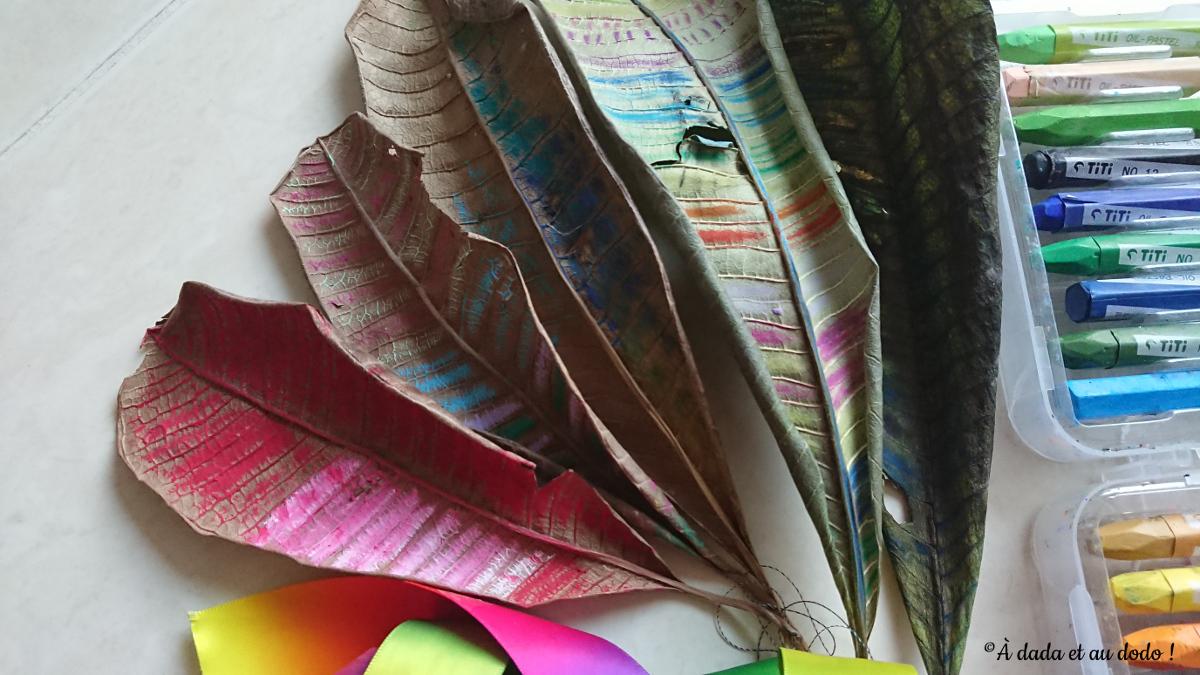 Feuilles d'automne en couleurs