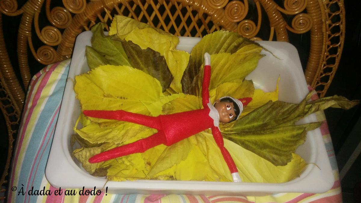 Lutin du Père Noël dans des feuilles mortes