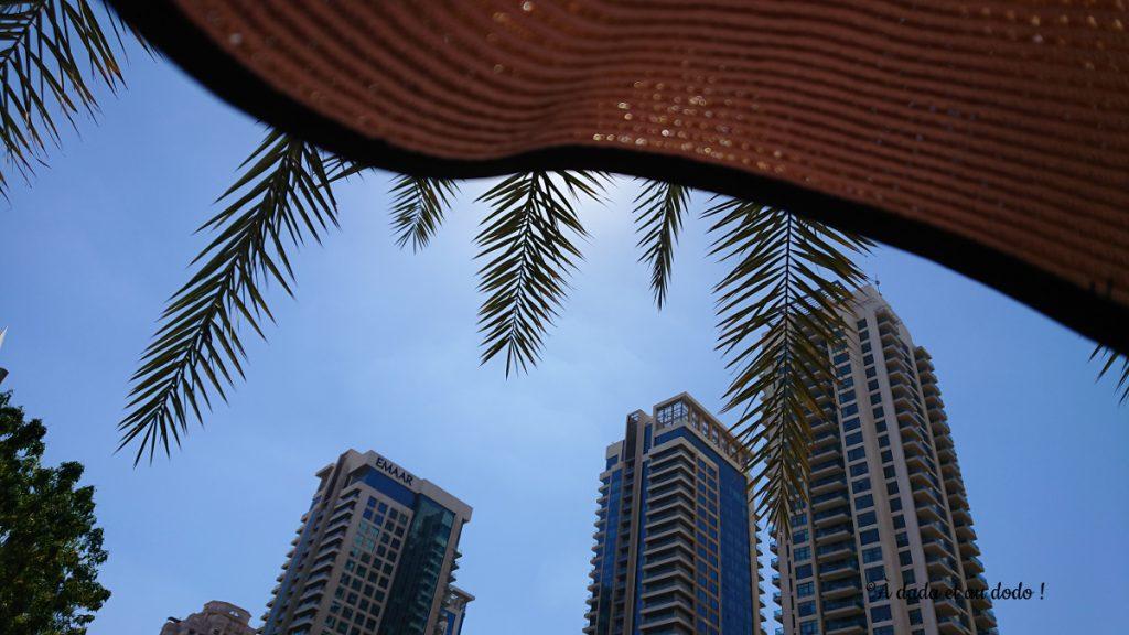 Dubaï sous les palmiers